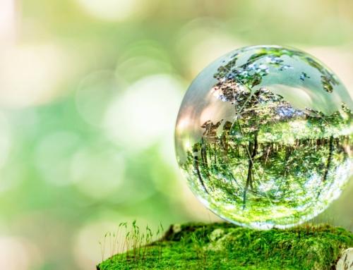 Economia circolare e sostenibilità