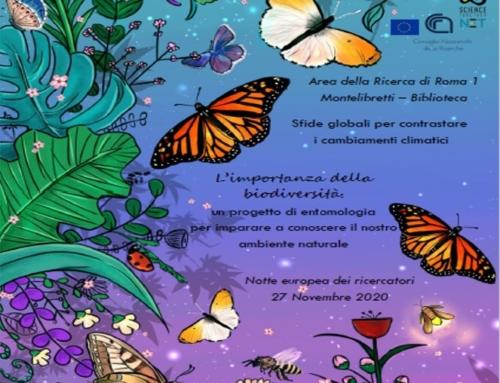 L'importanza della biodiversità – 2